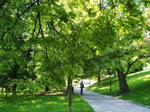 Muž si vzal do parku pod Špilberkem dýku a několik nožů, skončil v poutech