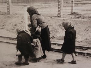 Brno daruje pozemky na výstavbu Dokumentačního centra holokaustu