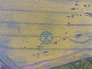 FOTO: Nedaleko Brna se objevil obrazec v řepce. Nešlo o dílo mimozemšťanů, ale protest aktivistů