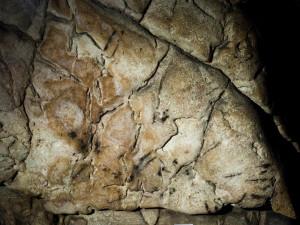 Na nejstarší kresbu v ČR začnou upozorňovat průvodci