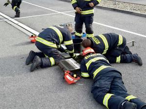 Brněnští hasiči zachránili z kanálu osm malých káčátek