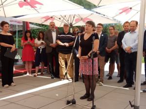 Bývalá ombudsmanka Šabatová kandiduje do senátu za Brno jako nestraník