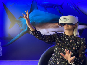 SOUTĚŽ: Do útrob džungle nebo hlubin oceánů. Virtuální expedice brněnské zoo přenese návštěvníky na druhý konec světa