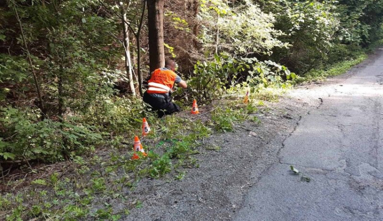 Cyklista nezvládl v kopcích na Blanensku průjezd zatáčkou, vletěl do lesa a na místě zemřel