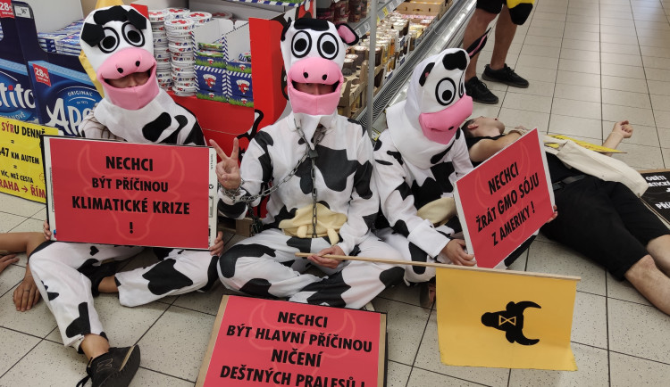 FOTO/VIDEO: Aktivisté v maskách zaplnili Vaňkovku. Chtěli upozornit na odlesňování pralesů kvůli živočišnému průmyslu