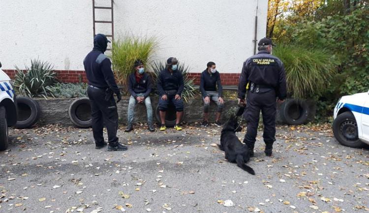 Celníci chytili na poli u hranic se Slovenskem tři nelegální migranty