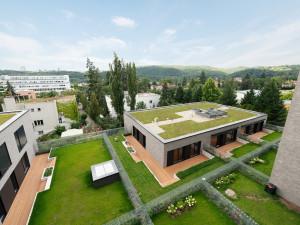 Brno jako první město v republice podpořilo vytváření zelených střech. Za projekt získalo prestižní ekologickou cenu