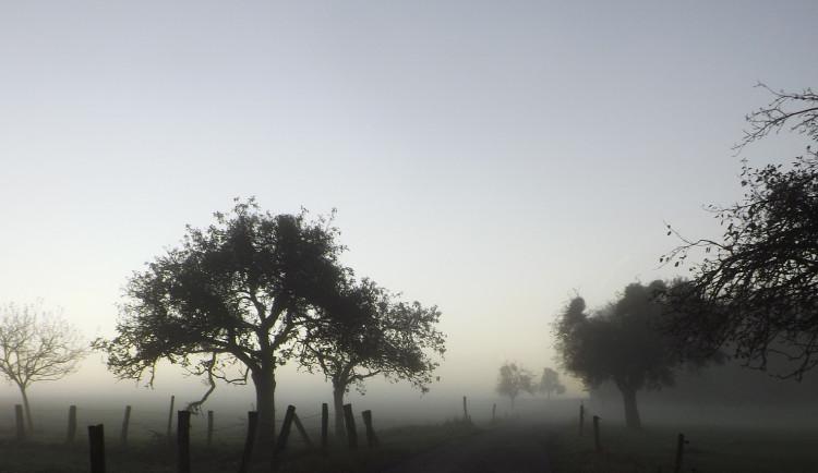 POČASÍ NA SOBOTU:  Mrznoucí mlhy a typicky podzimní počasí