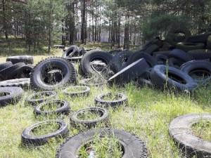 Za černými skládkami mnohdy stojí nevědomost, speciální web radí řidičům, co se starými pneumatikami