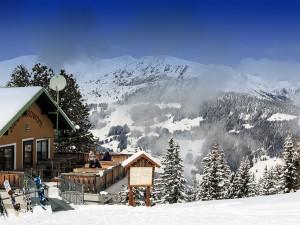 Podvodníci nabízeli pronájem horské chaty v Alpách za jeden a půl milionu, majitel o tom ale netušil