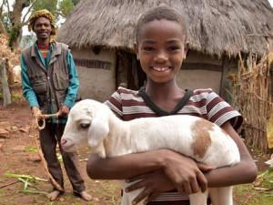 Lidé v Jihomoravském kraji kupují kozy ve velkém. Skutečné dárky pomáhají u nás i v zahraničí