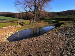 Povodí Moravy revitalizovalo Knínický potok, vznikly na něm nové tůně a mokřady