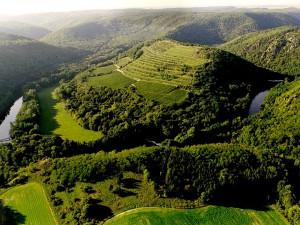 Víno zde pěstovali už před tisíci lety. Nejstarší vinice v Česku aspiruje na zapsání do UNESCO