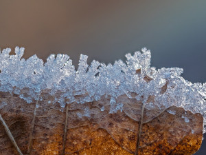 POČASÍ NA SOBOTU: Mírný vítr, teploty na nule a místy sníh