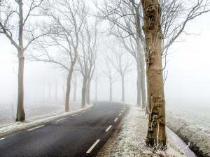 POČASÍ NA PÁTEK: Oblačno až zataženo a studený vzduch od severu
