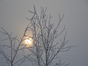POČASÍ NA ÚTERÝ: Zataženo až oblačno, večer bude sněžit