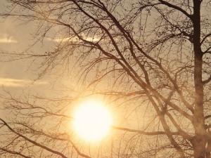 POČASÍ NA STŘEDU: Mlha a teploty až 14°C