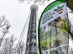 Nejoblíbenější rozhledna roku je Holedná v Brně
