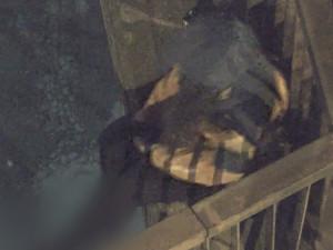 Strážníci zachránili život mladé ženě, opilá plánovala skočit z 15 metrového mostu