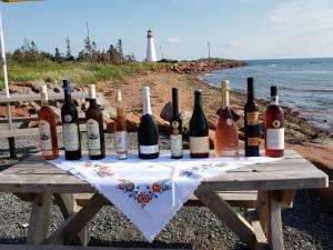 Kanaďani si zamilovali moravská a česká vína, místní vinaři slaví úspěch