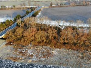 Nový domov pro rostliny a živočichy, ve Vyškově vznikne mokřadní biotop