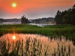 Jižní Morava bojuje proti suchu, vznikne osm set nových vodních ploch