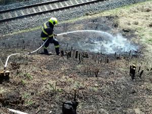 Loni hořelo v kraji nejméně za posledních dvacet let, obětí ale přibylo