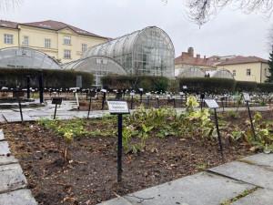 Brněnská botanická zahrada zahájila novou sezónu