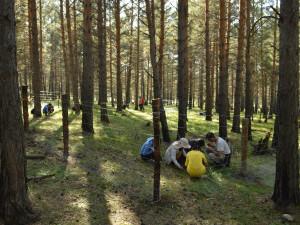 Vědci z Brna ukážou Mongolům, jak se postarat o lesy