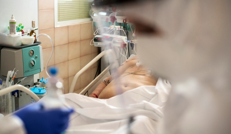 Funguje ivermectin? Brněnští lékaři zkoumali účinky experimentálního léku