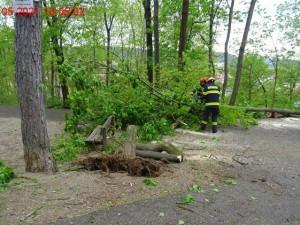 V Brně hrozil pád stromu na dětské hřiště, zasáhli hasiči