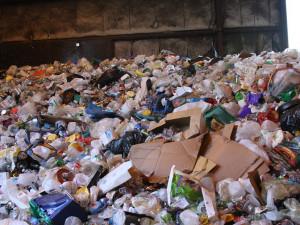 Brněnští vědci chtějí ulevit přírodě získáním kovů z odpadu. Pomůžou jim bakterie