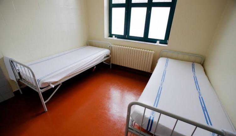 Záchytná stanice v Brně měla loni kvůli covidu pokles záchytů o pětinu