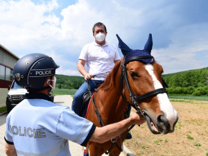 Policejní koně v Brně mají nové tréninkové středisko, zajezdil si i Hamáček