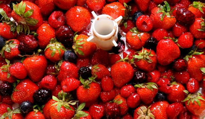 Vědci z Brna chtějí, aby se Češi více zajímali o původ potravin