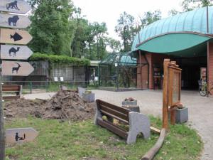 Hodonínská zoo by po tornádu mohla otveřít, problém je v příjezdových cestách