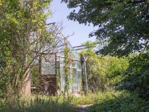 Před deseti lety zavřeli zahradnickou školu v Brně. Pozemky se prodaly a chátrají