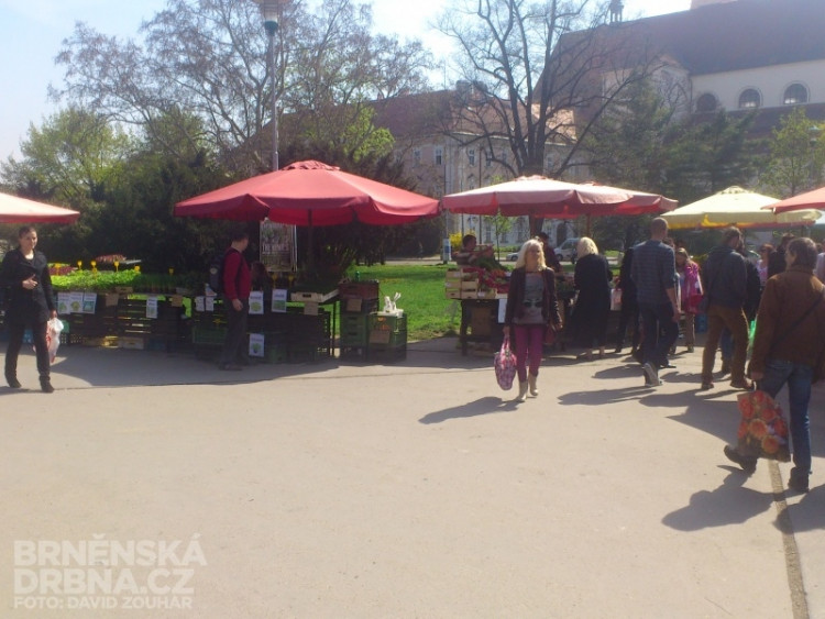 Prodejci se přesunuli na Moravské náměstí, foto: Brněnská Drbna, David Zouhar