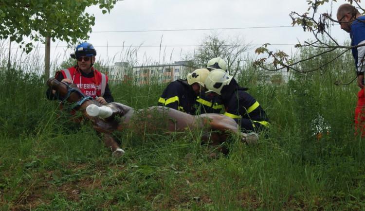 Cvičení Dálnice 2016 prověřilo připravenost složek IZS na jižní Moravě