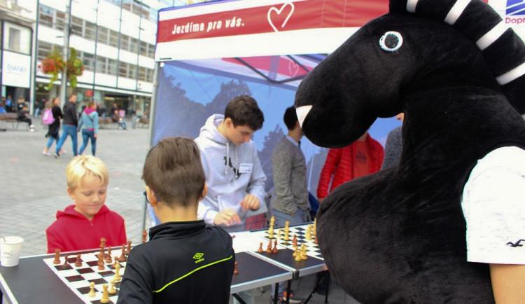 Šachová šalina